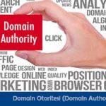 domain otoritesi