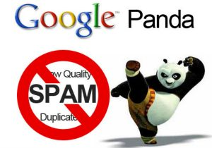 Google Panda algoritma güncellemesi