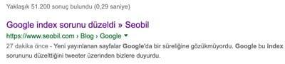 google index sorunu